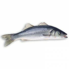 Havsabborre (Lavraki) GREKISK 400-600g (pris per kg)